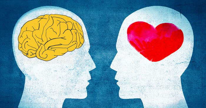 Emotional Intelligence stock image - Mind and heart connection is EQ